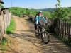 mountainbike-adulti-mehedinti-03