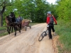 mountainbike-adulti-mehedinti-08