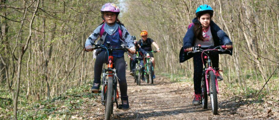excursie cu bicicleta la Cernica Sun Adventure