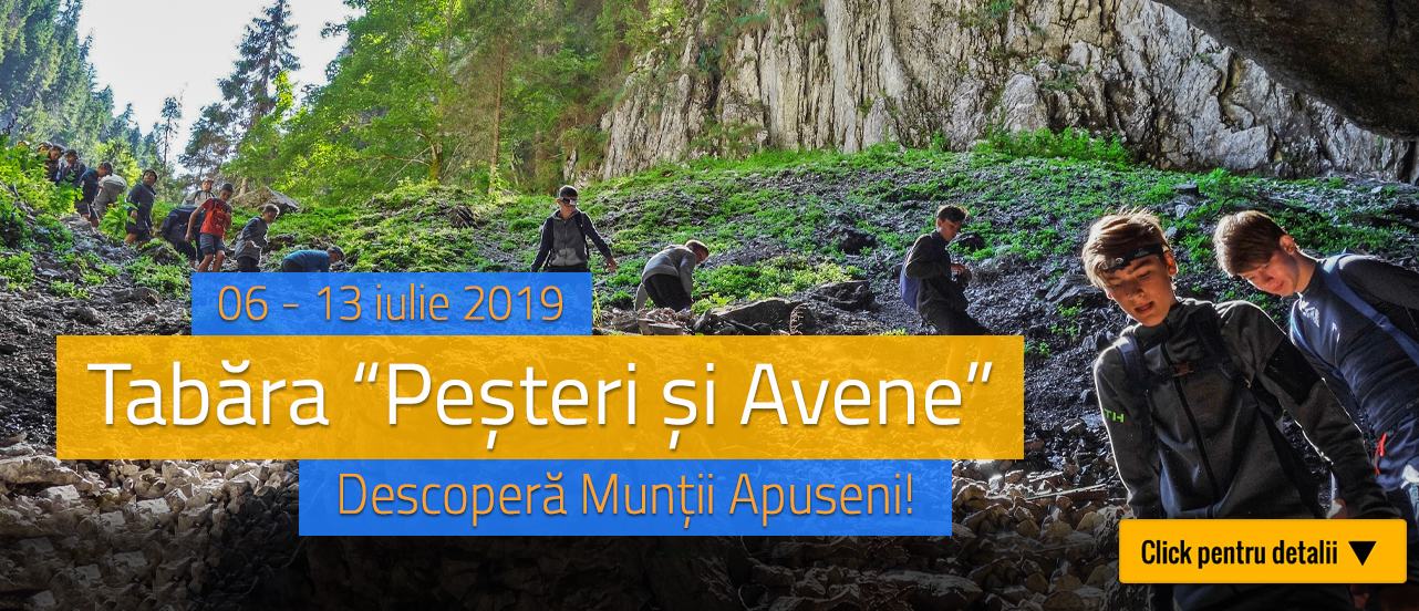 Banner-Pesteri-si-Avene
