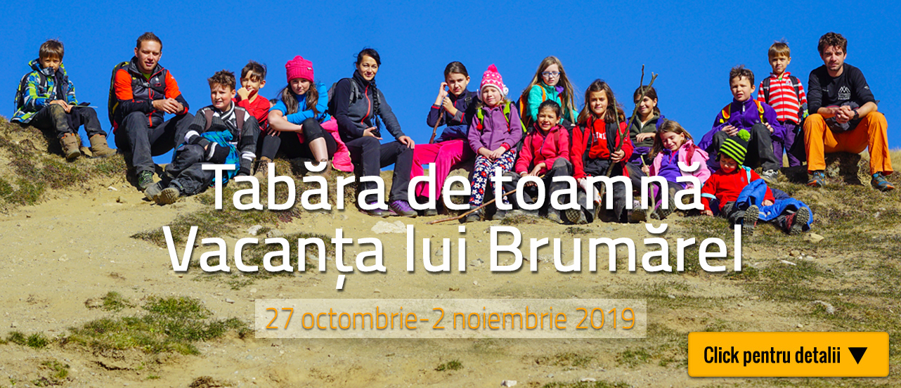 Brumarel-19